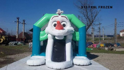 913-frsl-frozen